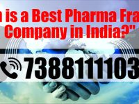 Which is a Best Pharma Franchise Company in India