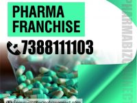 Franchise Pharmaceutical Companies