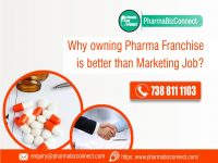 Why Pharma Franchise is better than marketing job