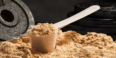 Manufacture of Protein Powder