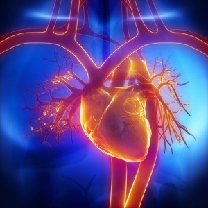 Pharma PCD in Cardiac​ ​and​ ​Diabetic Products